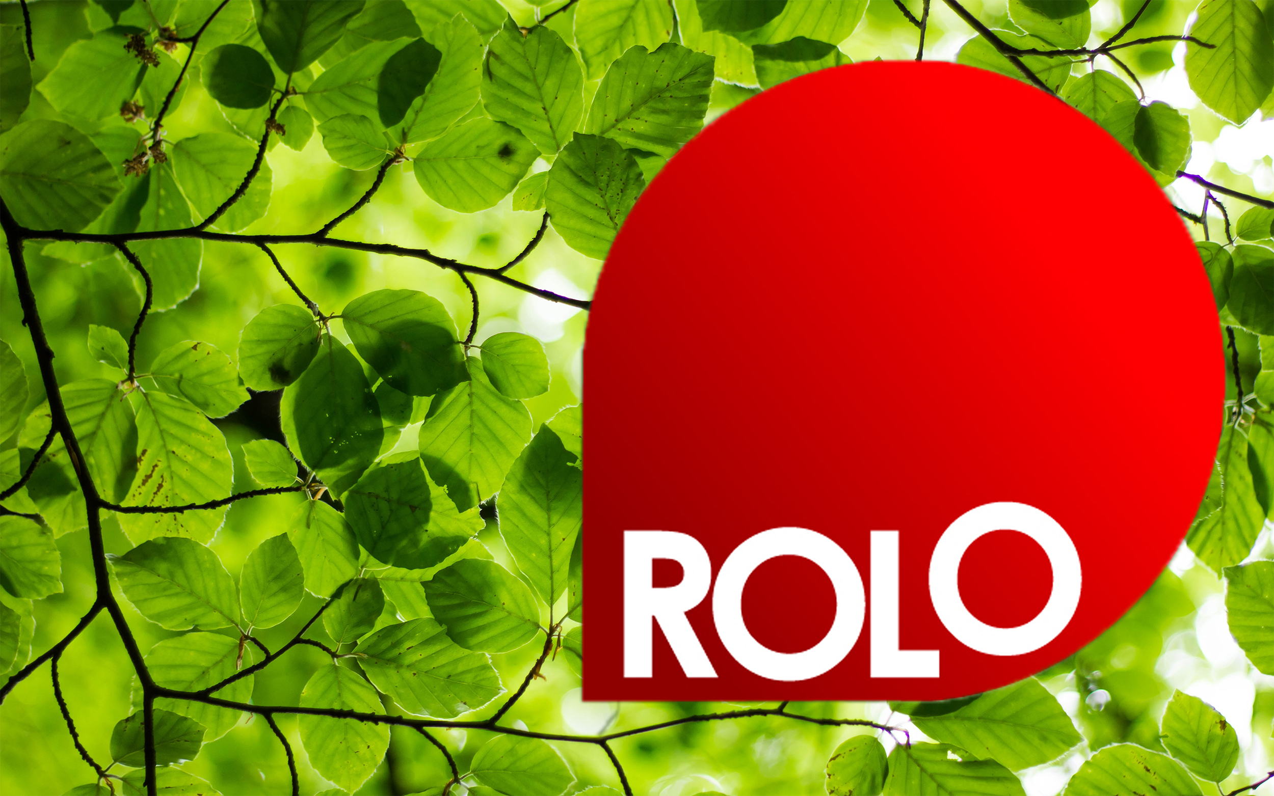 Management ROLO courses for land-based workers